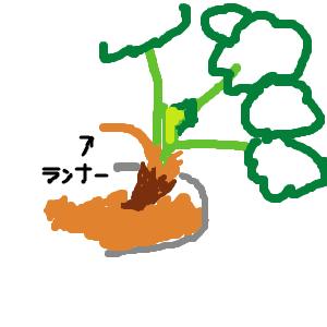 Cocolog_oekaki_2010_11_04_17_04
